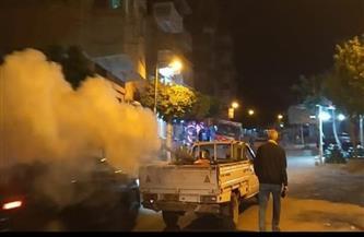 حملات لمكافحة الحشرات الطائرة في كفر الشيخ
