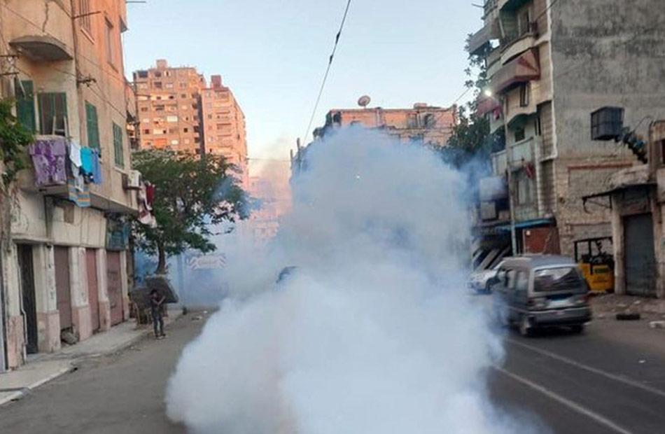حملة لمكافحة انتشار الحشرات ناقلات الأمراض في المنتزه بالإسكندرية