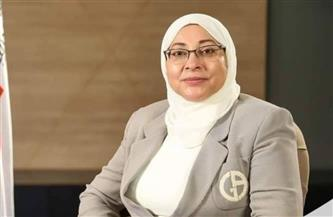 نائب-محافظ-القاهرة-تتابع-تطوير-قرية-الفواخير-في-مصر-القديمة-