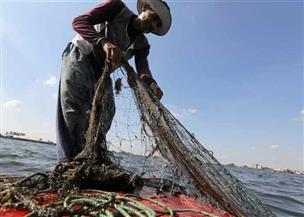 42 ألف صياد يبحرون إلى «بر الأمان».. ترحيب مجتمعي بالمبادرة الرئاسية لتحسين ظروف الصيادين