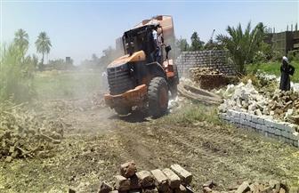 إزالة 17 حالة تعد على الأراضي الزراعية والبناء في الدقهلية | صور