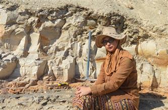 حفريات المنصورة يواصل اكتشافاته.. حفرية سمكة القمر عمرها 56 مليون عام |صور