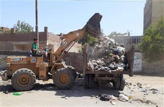 رفع 25 طنًا من القمامة في حملة نظافة بمدينة الباجور بالمنوفية | صور