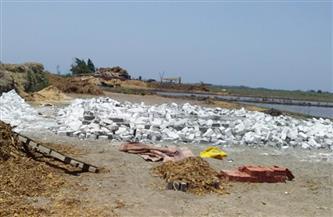 إزالة حظيرتين جديدتين مخالفتين بمساحة 500 متر بحي الجنوب ببورسعيد