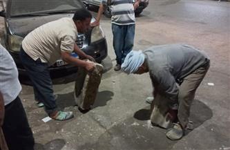 حي الدقي يشن حملة نظافة ورفع الإشغالات من الطرق | صور