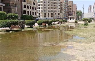 غمر جميع الحدائق العامة بالمياه منعا للتجمعات بمدينة قويسنا بالمنوفية | صور