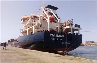 تداول 25 سفينة وشحن وتفريغ 6700 طن صودا كاوية ورخام بموانئ بورسعيد| صور