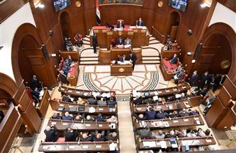 مجلس الشيوخ يعلن خلو مقعد النائب أحمد عبد العزيز ويقف دقيقة حدادًا على روحه