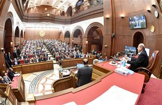 برلمانية: الدولة المصرية تمتلك بصمات مؤثرة في القضية الفلسطينية