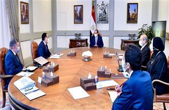 الرئيس السيسي يتابع جهود إحلال الواردات وتوفير مستلزمات الإنتاج المحلية للصناعة الوطنية