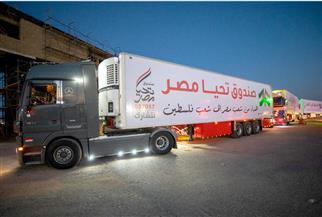 56 شاحنة مساعدات من شعب مصر تصل قطاع غزة