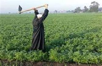 إصابة عامل في خلاف على أولوية ري أرض زراعية بدكرنس