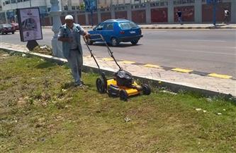 حملة لتجميل الحدائق والمسطحات الخضراء وسط الإسكندرية | صور