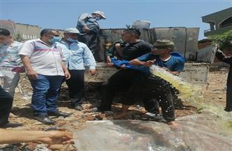 إلقاء الذريعة السمكية من البلطي بفرع النيل بقرية الطويلة بمركز طلخا