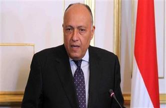 وزيرا خارجية مصر والأردن يناقشان التحركات المصرية لتثبيت وقف إطلاق النار في غزة