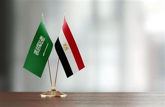 السعودية ومصر يبحثان مستجدات الأوضاع في المنطقة