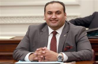 نائب بالشيوخ: قرارات الرئيس السيسي تصب في صالح تطوير منظومة القضاء والنهوض به