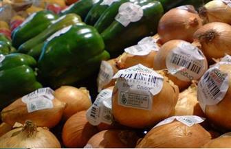 """""""التكويد الزراعى"""".. تذكرة دخول السوق العالمية وإضافة قيمة للمنتج للوصول إلى عملاء جدد"""