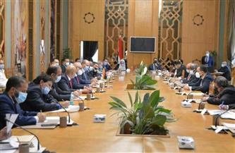 انطلاق فعاليات الدورة الثالثة عشرة للجنة القنصلية المصرية ـ الليبية المشتركة | صور