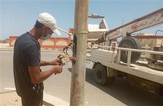 تركيب كشافات وصيانة لأعمدة الإنارة العامة في شوارع حى أول طنطا