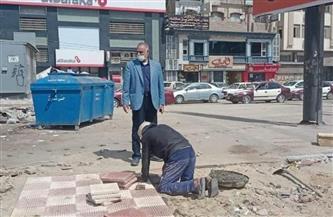ترميم وتطوير الجزيرة الوسطى بشارع قناة السويس في المنصورة بمشاركة المجتمع المدني