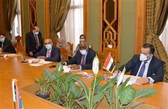 اللجنة القنصلية المصرية الليبية المشتركة تستأنف أعمالها غدًا