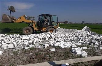 إزالة 3 حالات تعد على الأراضي الزراعية بمركز البلينا | صور