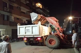 رفع 15 طن مخلفات في حملة مكبرة على الأقصر | صور