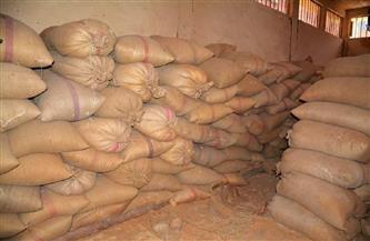 توريد  73 ألف طن قمح والانتهاء من حصاد 84 ألف فدان حتى الآن بالمنوفية