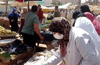 تحرير 15 محضرًا ضد التجار وضبط أسماك ولحوم فاسدة بالشرقية | صور