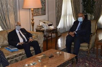وزير الخارجية يبحث مع نظيره المالي سُبُل تعزيز العلاقات الثنائية | صور