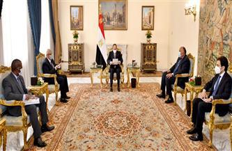 الرئيس السيسي يؤكد خصوصية العلاقات المتميزة التي تربط مصر بشقيقتها مالي