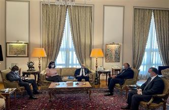 سامح شكري يؤكد رغبة مصر في تعزيز العلاقات مع مالي بمختلف المجالات | صور