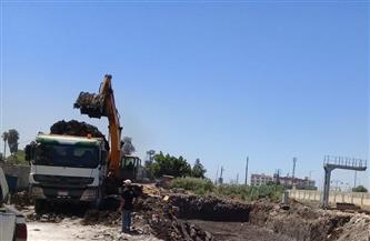 رفع 61 طن تراكمات ومسح للأتربة من شوارع حي أول طنطا