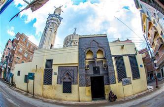 بعدسة فنان.. «فوّه الإسلامية» مدينة المساجد | صور