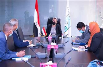 وزيرة البيئة تلتقي ممثلي منظمة الفاو لبحث إمكانية تنفيذ تجارب لمشروعات بيئية| صور