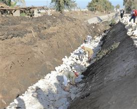 محافظ بني سويف: تبطين 211 كيلو متر ضمن المشروع القومي لتأهيل وتبطين الترع| صور