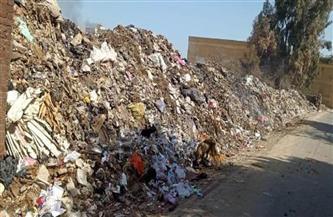 التخلص من 7 آلاف طن مخلفات وقمامة بالشرقية |صور