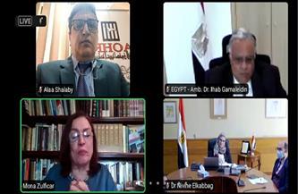 رئيس المنظمة العربية لحقوق الإنسان يكشف مزايا قانون العمل الأهلي | صور