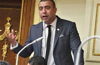 برلماني يتقدم بطلب إحاطة حول أزمة تكليف أطباء دفعة مارس 2021