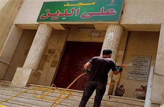 تطهير وتعقيم 7 مساجد بالعامرية غرب الإسكندرية| صور