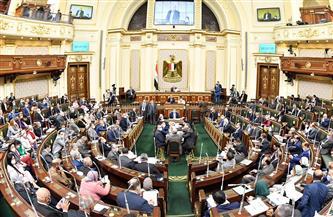 """""""صيادلة الإسكندرية"""" تناقش أزمة تكليف دفعتي 2018 و2019 مع """"النواب"""""""