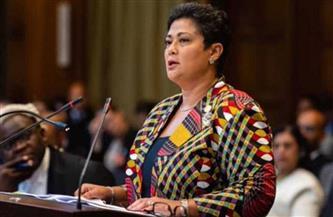 نميرة نجم: القارة الإفريقية في حاجة لحماية سواحلها مع تزايد القرصنة والإرهاب