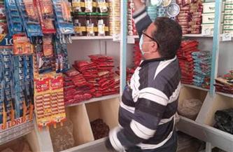 صحة الشرقية: غلق وتشمع 14 منشآة غذائية وإعدام 2طن ونصف أغذية | صور