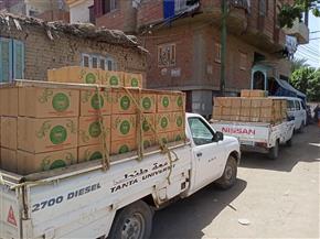 جامعة طنطا توزع 350 كرتونة مواد غذائية بزفتي ضمن مبادرة «حياة كريمة»