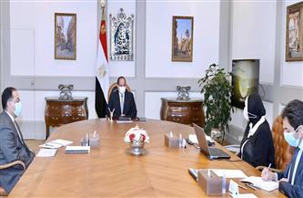 الرئيس السيسي يوجه بتعزيز الاستثمار الصناعي الوطني بالاشتراك مع خبرات القطاع الخاص