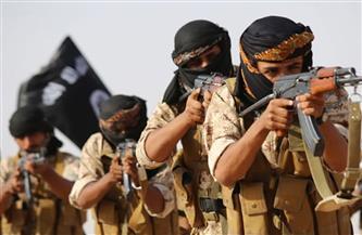 """""""داعش"""" يواصل حربه النفسية بإعادة نشر مقاطع سابقة.. ومرصد الأزهر: هدفها بث الرعب في نفوس المدنيين"""