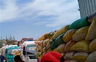 توريد 174553 طن قمح للشون والمطاحن بكفر الشيخ | صور