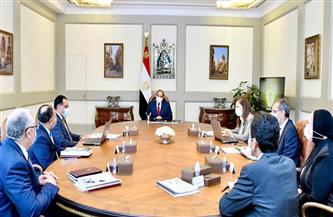 الرئيس السيسي يوجه بالاستمرار في جهود الدولة الخاصة بالإصلاحات الهيكلية