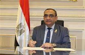"""رئيس برلمانية """"حماة الوطن"""": التنسيقية أثبتت جدارتها البرلمانية والتنفيذية"""